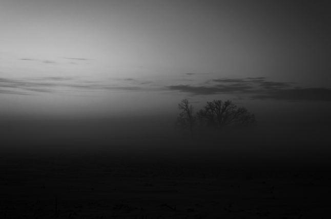 dark_fog